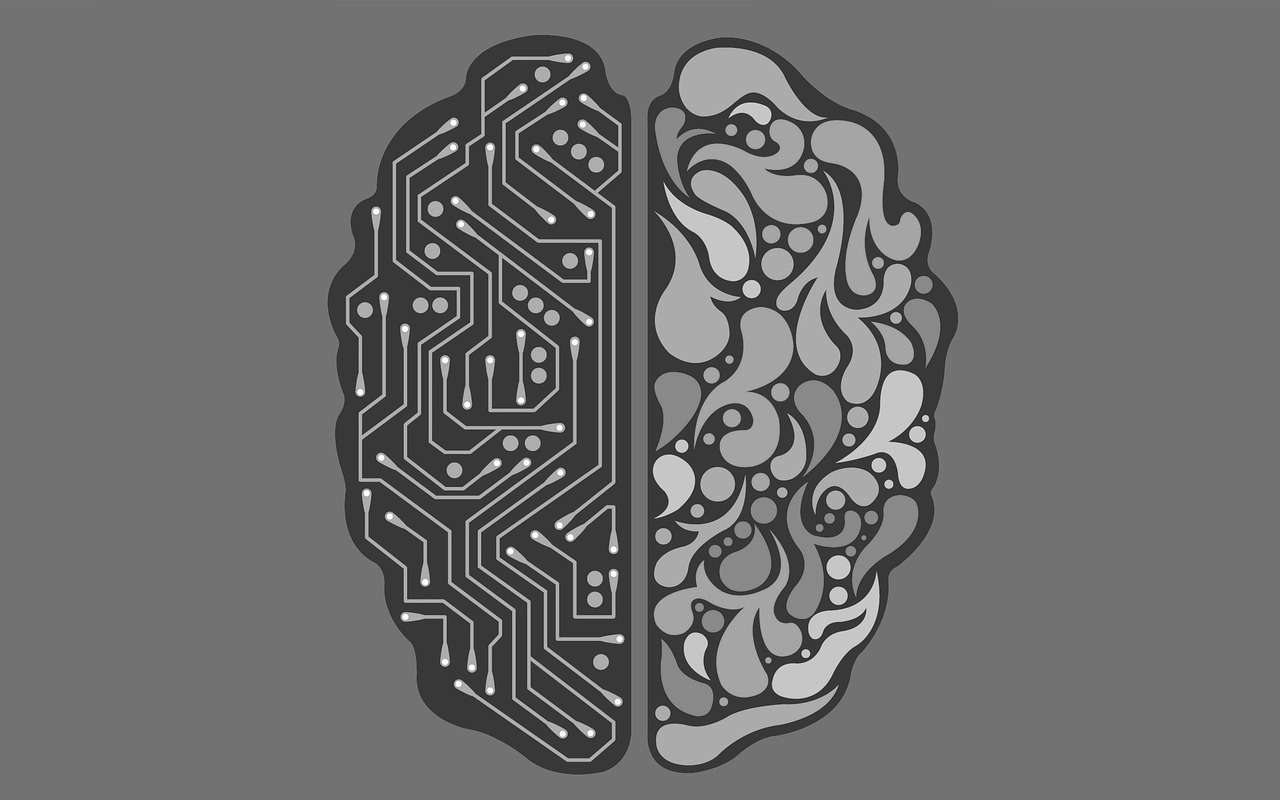 cuantos tipos de inteligencia hay y en que consisten