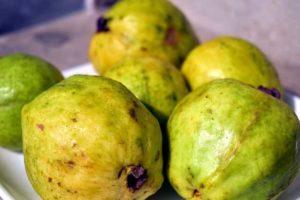Guayaba fruto tropical nutritivo