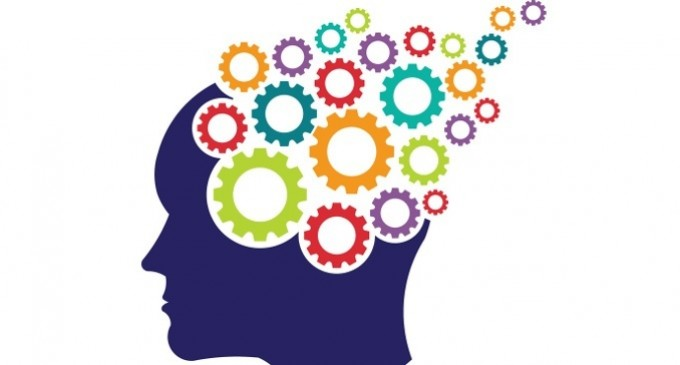 caracteristicas de la metacognicion
