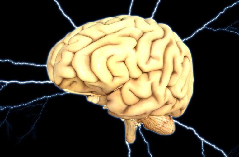procesos psicologicos basicos y superiores