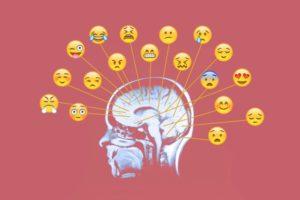 cuales son las emociones basicas del ser humano